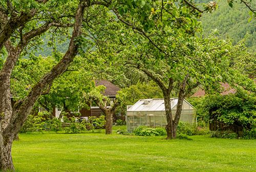 farm camping